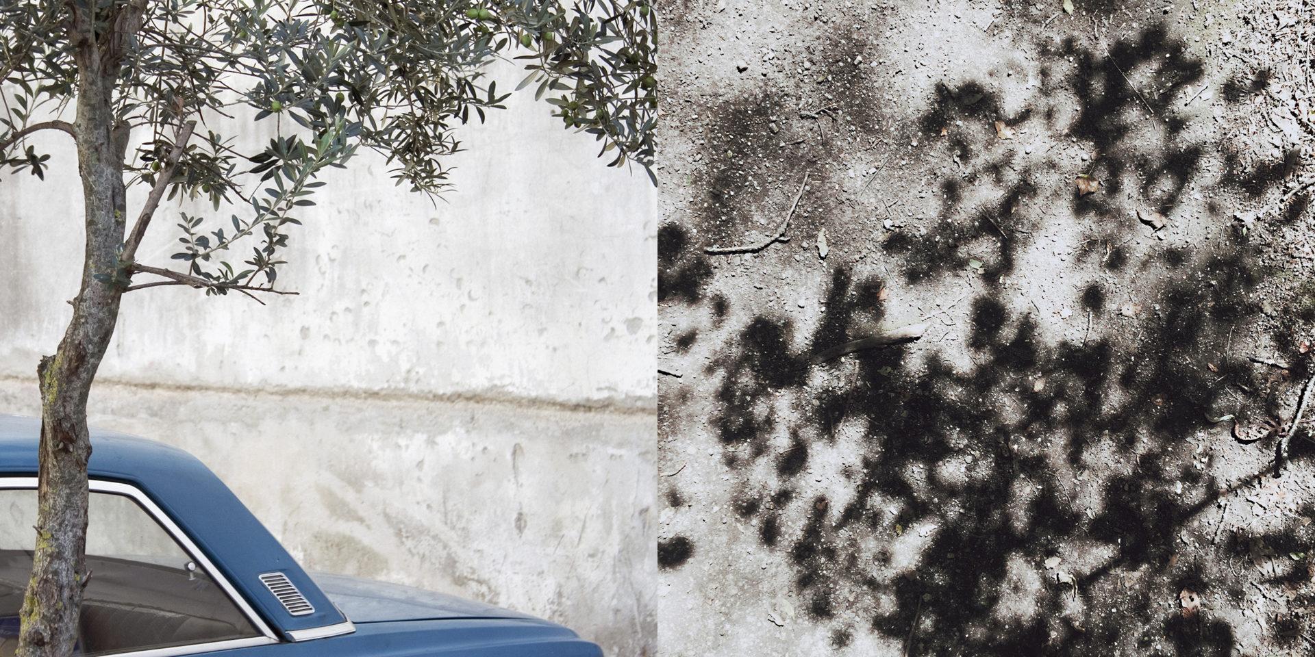 Deze foto (links) is aan te kopen via howitstarts.nl